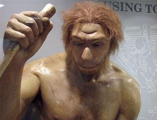 La nariz distingui� a los neandertales pero no acab� con ellos