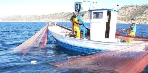 Los pescadores de Baleares y la Fundación Palma Aquarium firman un acuerdo para proteger la fauna y flora marinas