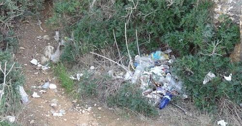 Cerca de un centenar de voluntarios retiran unos 250 kilos de basura en el litoral de Son Ver�