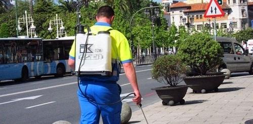 43 treballadors de més de 35 anys s'incorporen al Consell de Mallorca i a l'IMAS
