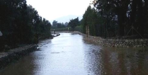 El desbordamiento del torrente de Can Botana corta la carretera Ma-2203 en Pollen�a