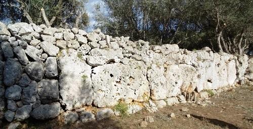 Señalizarán el yacimiento arqueológico talayótico de Cas Quitxero