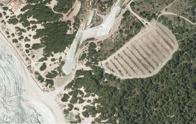 El Govern quiere proteger más el parque natural de es trenc   Salobrar de Campos