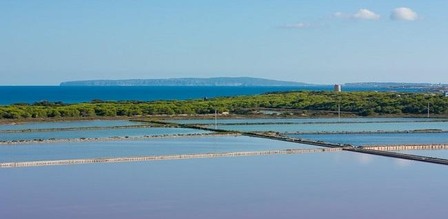Formentera limpia el canal de Ses Salines para evitar la 'pérdida de biodiversidad ornitológica'