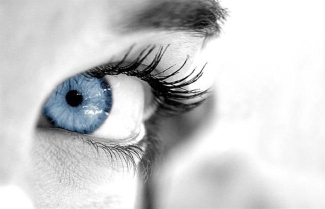 El ojo cambia su 'software' y 'hardware' para ver por la noche