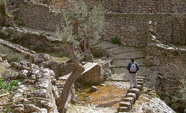 El Consell retoma las rutas naturales y patrimoniales organizadas con motivo de la Diada de Mallorca 2020