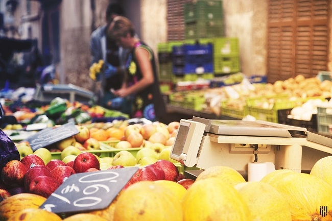 El FOGAIBA destinará 700.000 euros al fomento de la agricultura ecológica