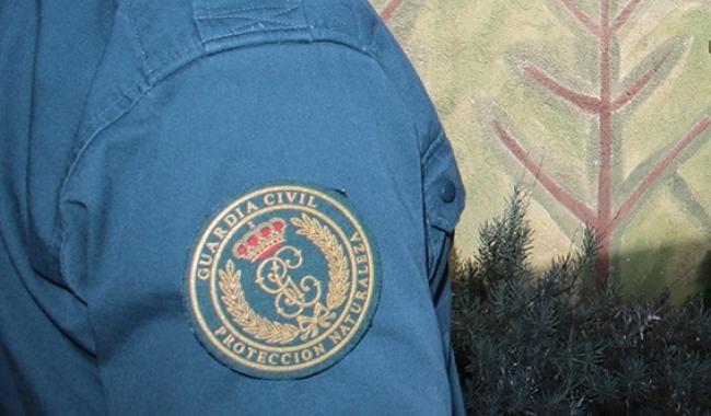 La Guardia Civil investiga un caso de intrusismo profesional en Menorca