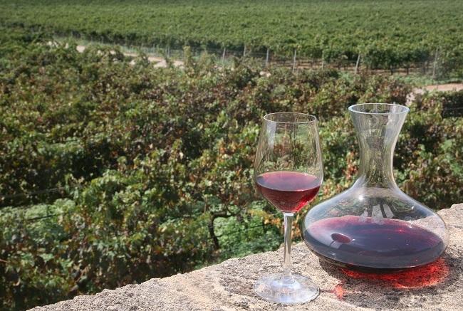Las exportaciones de vino balear de calidad a la Unión Europea aumentan un 13% en el 2018