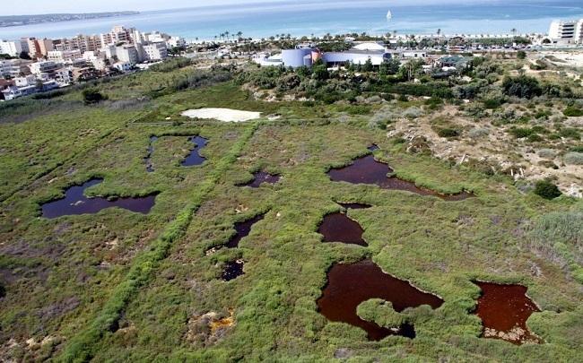 Frente común de las instituciones y las patronales de comercio para evitar una gran superficie en Ses Fontanelles