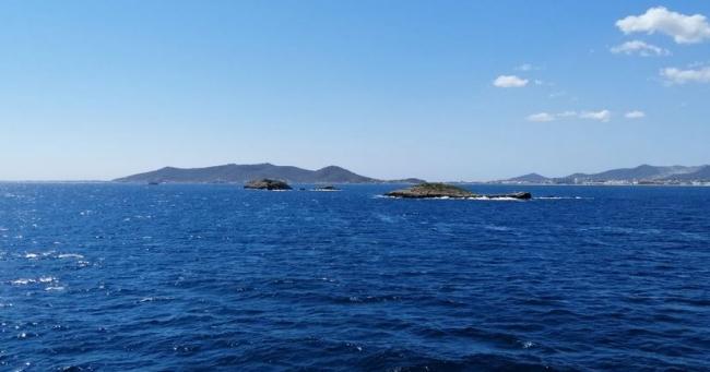 La Reserva Marina des Freus de Ibiza y Formentera cumple 20 años multiplicando por ocho la presencia de peces en las aguas superficiales