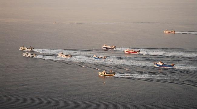Oceana: El Mediterráneo es la región con más sobrepesca del mundo