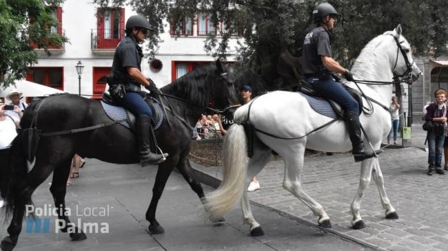 Policía local de Palma detiene a un hombre por un supuesto delito contra la salud pública