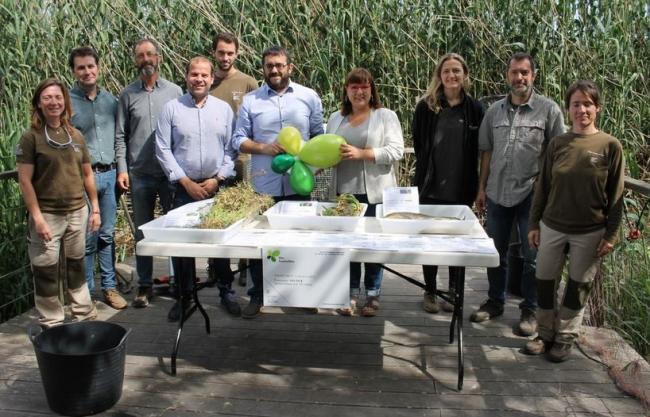 Medi Ambient trabaja para eliminar flora y fauna invasoras en las zonas húmedas de les Illes Balears financiado con ITS