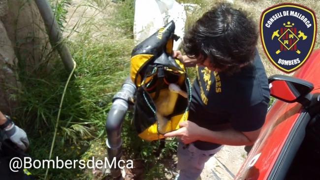 Bombers de Mallorca rescatan a tres patos que han caído dentro de un pozo de unos 20 metros de altura