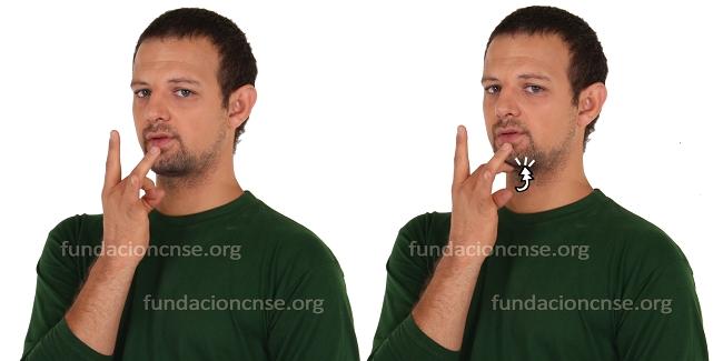 Se presenta el primer Diccionario Normativo multimedia de la Lengua de Signos Española