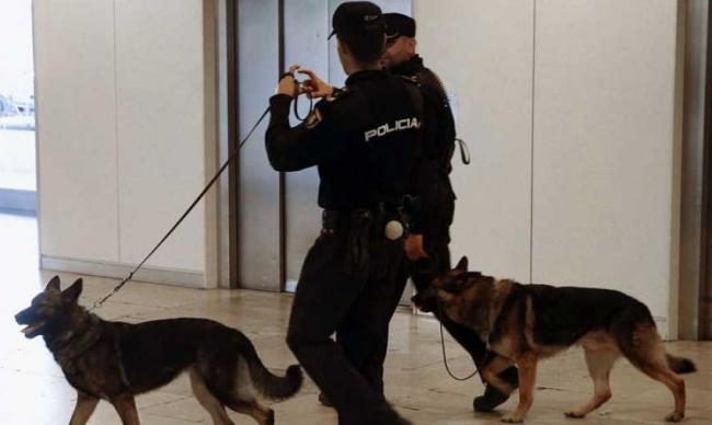Detenidos en un solo día cinco carteristas que operaban en la zona centro de Palma