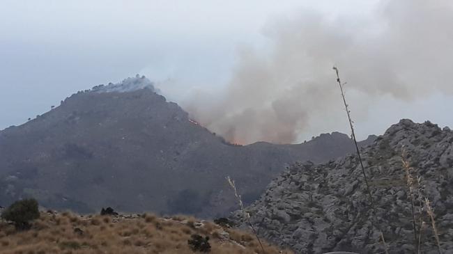 Estabilizado el incendio forestal de Cala Tuent en Escorca
