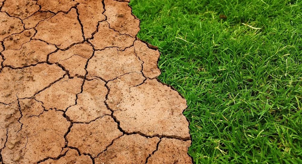 El estudio del IPCC sobre Cambio Climático reclama estrategias para proteger la tierra