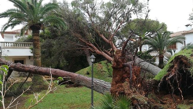 Santanyí trabaja para volver a la normalidad después de la tormenta