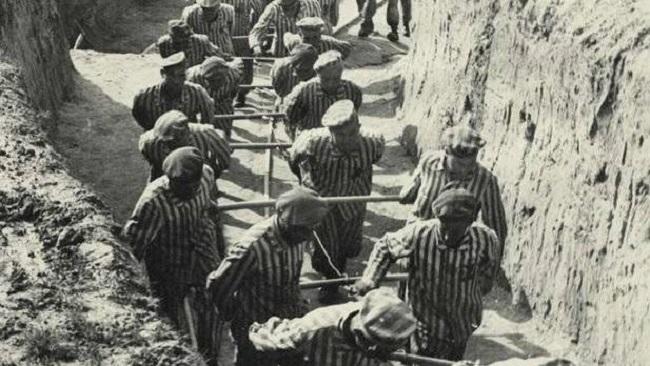 Propondrán al Ministerio de Justicia incluir 16 personas más en el Censo de Víctimas del nazismo de las Baleares