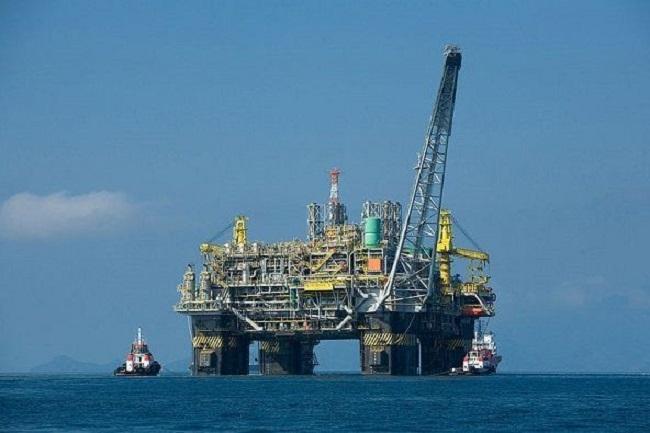 OceanCare insta al Gobierno español a archivar el proyecto de prospecciones MedSalt-2 por haber caducado su tramitación