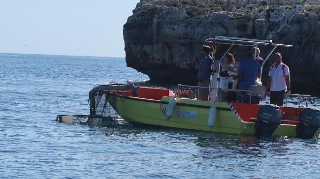 Dos millones de euros para el servicio de limpieza del litoral