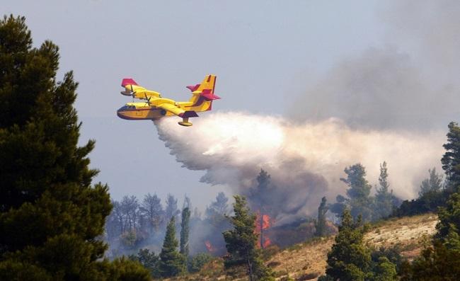Autorizada la contratación del servicio de medios aéreos para la lucha contra los incendios forestales