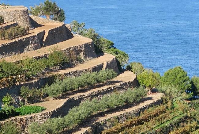 Empiezan las Jornadas de intercambio de iniciativas del patrimonio de la piedra en la isla de Mallorca