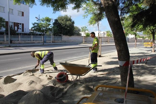 Los Socialistas de Mallorca colaborarán con ayuntamientos en la aplicación del decreto ley de protección del territorio