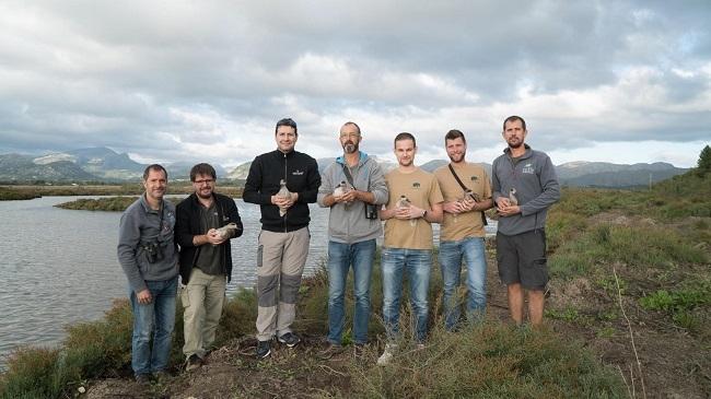 Liberadas en s'Albufereta una treintena de ejemplares de una especie en peligro crítico de extinción en el Estado