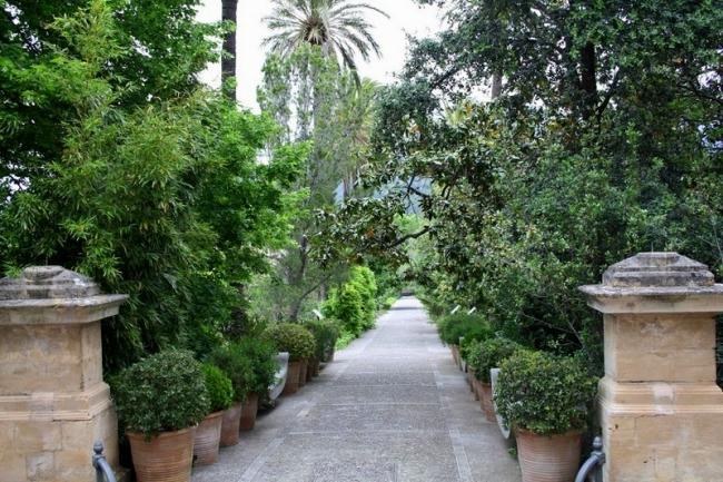 La fundación jardín botánico de Sóller recibe 48.736 € en concepto de patronazgo