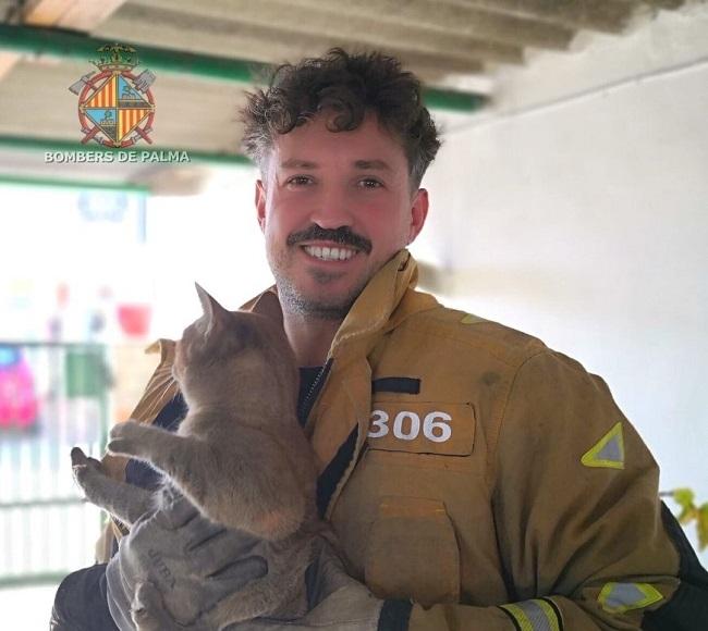 Bomberos de Palma rescatan un gato atrapado en una chimenea