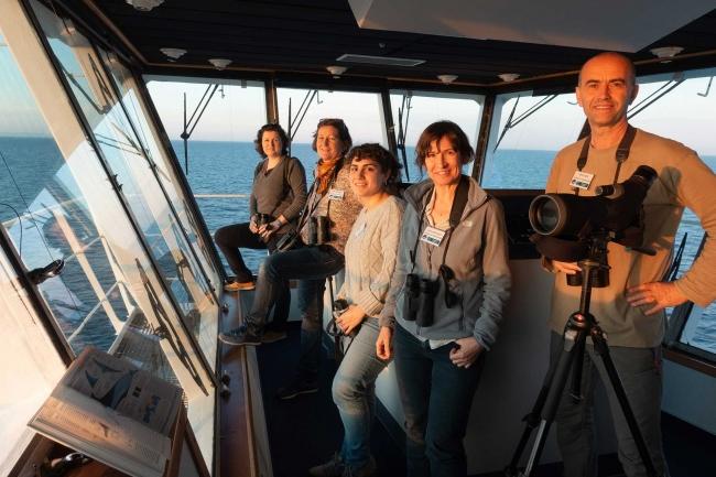 GOB i Baleària impulsen la investigació científica de cetacis i aus marines