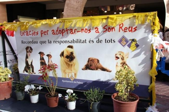 Trasladan a Son Reus tres perros de la Unidad Canina para poder garantizar la adopción
