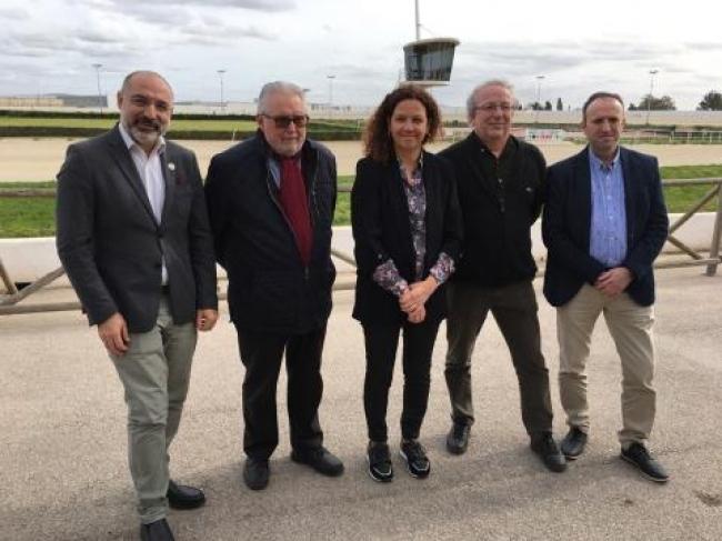 El Consell subvenciona el deporte hípico de Mallorca con 920.000 euros