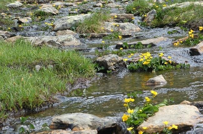 El Gobierno crea un nuevo título de Técnico en Guía en el Medio Natural y de Tiempo Libre