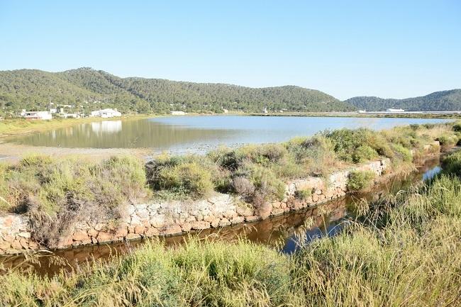 El nuevo contrato de mantenimiento de los torrentes de Ibiza se licitará por un máximo de 484.000 €