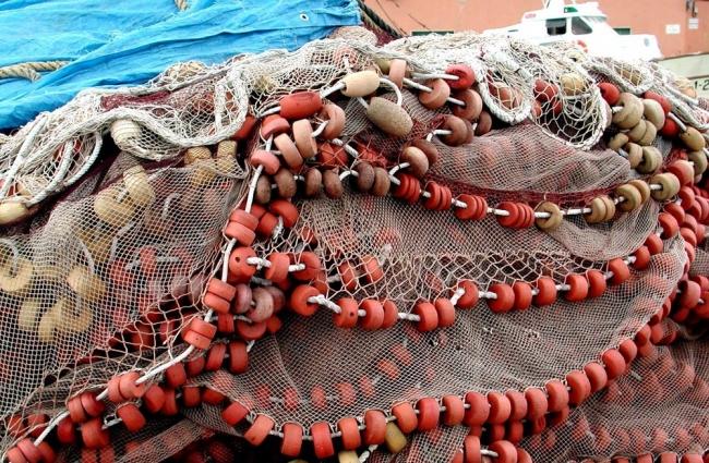 Pesca destinará 200.000 euros a garantizar la comercialización pesquera de todas las islas