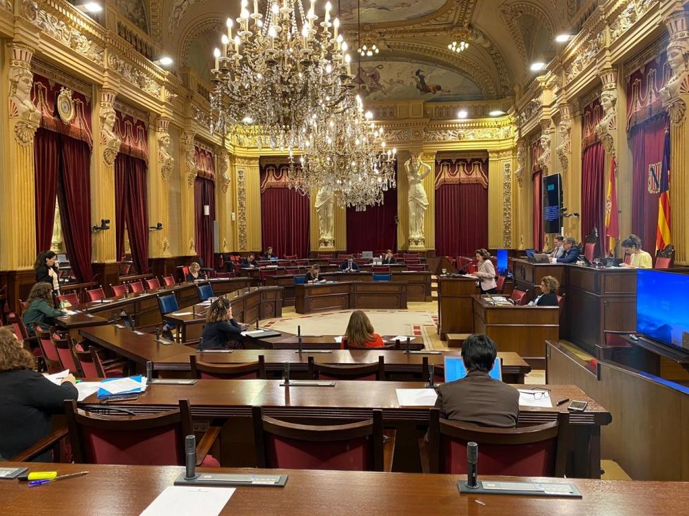 El Pi votará en contra de las medidas de reactivación económica por no priorizar los intereses de Baleares