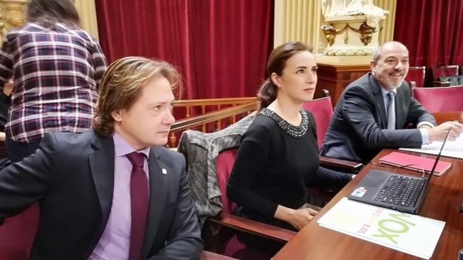https://www.noticiasmallorca.es/imatges/fotosweb/2020/05/05/7182vox.jpg