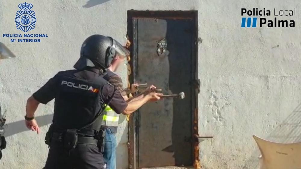La Policía Nacional desmantela una plantación de marihuana que distribuía a Son Banya