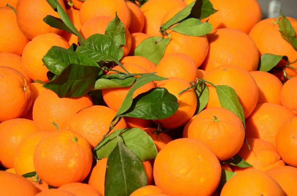 El precio de venta al público de las naranjas en mercados y grandes superficies dobla el de origen