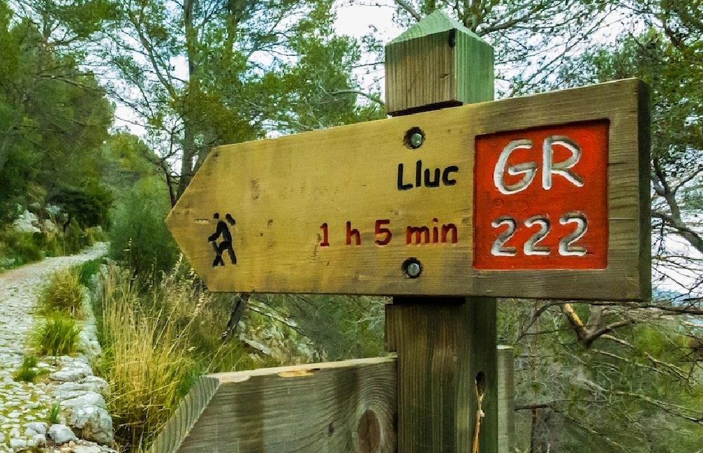 El Ayuntamiento de Pollença presenta alegaciones al proyecto de acondicionamiento del camino viejo de Lluc