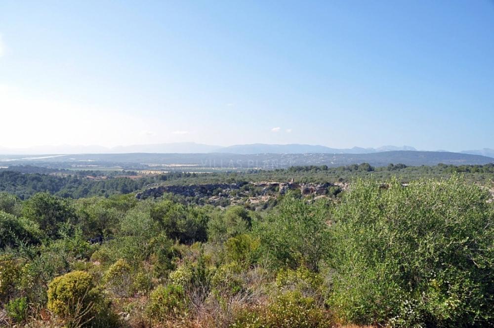 El GOB felicita al Ayuntamiento de Palma por la desclasificación de Son Gual