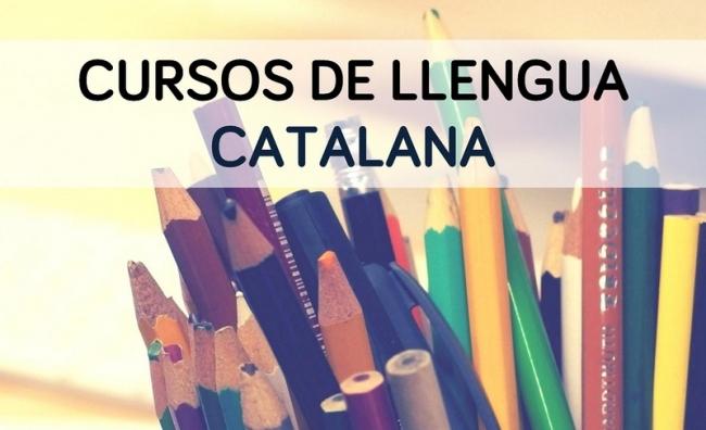 El IEB adapta al aprendizaje virtual los cursos de verano de catalán de los niveles A1, A2 y B2