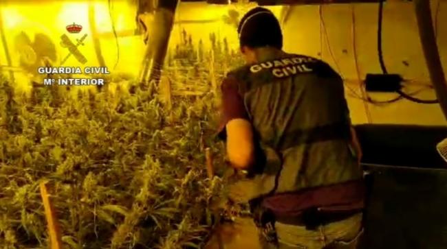 La Guardia Civil desmantela una organización criminal dedicada a la distribución de marihuana por toda Europa