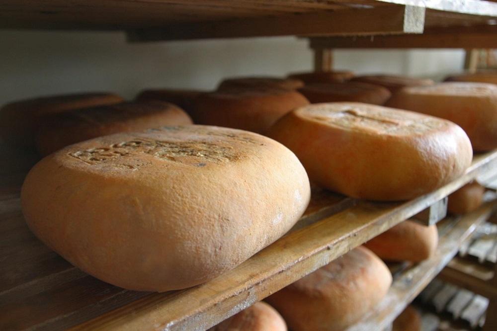 Las Islas son la cuarta comunidad de España en volumen de queso subvencionado