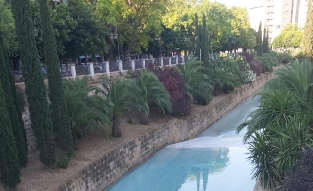Los parques y las zonas verdes de Palma cerrarán a las 20.00 h