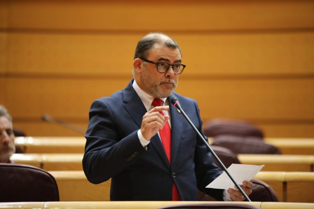 El Senado aprueba la propuesta socialista de mantener el descuento de residente del 75%